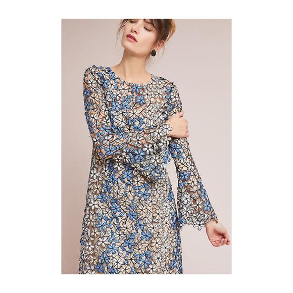 bbadca248f12 Anthropologie Dresses | Shoshanna Mabel Lace Dress 8 Petite | Poshmark